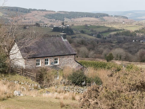 Rhiwddu Farmhouse - UKC3003 (UKC3003)