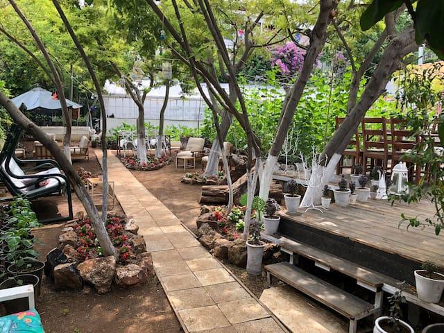 Bahçeden Sofraya Organik Kahvaltı &Hostel&Camping
