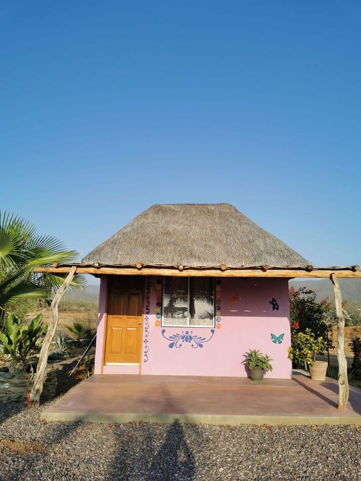 Casa Jojoba