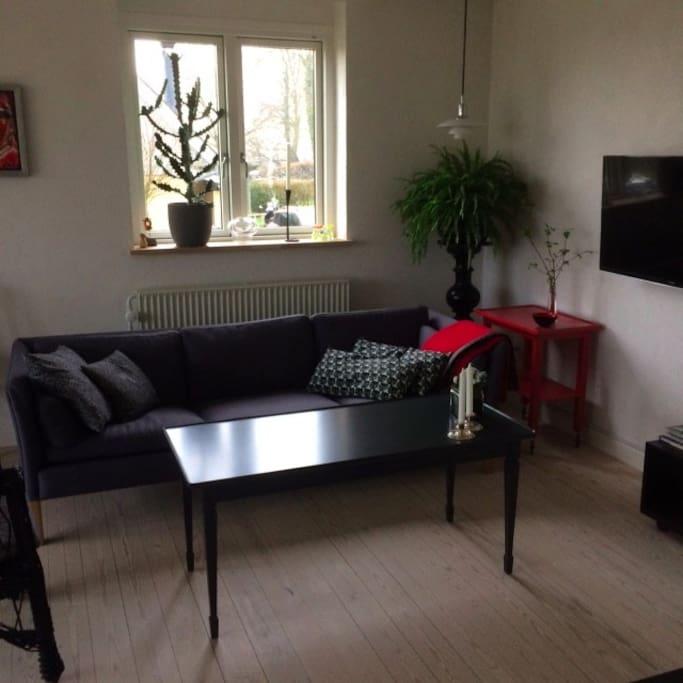 sofa og tv
