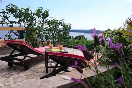 Apartment Mare (6) - Hvar