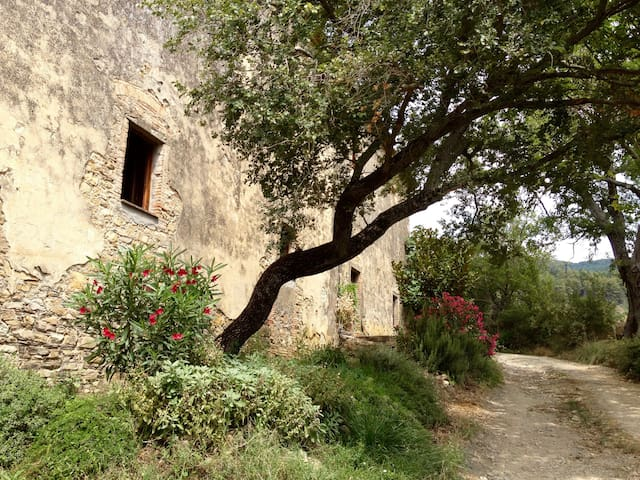 Casa San Federigo - Sasso Pisano - 獨棟