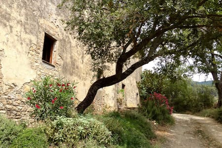 Casa San Federigo - Sasso Pisano - Haus