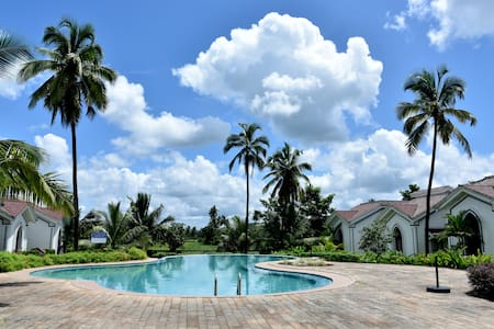 Charming Pool facing 1 bhk apt@ Siolim,North Goa