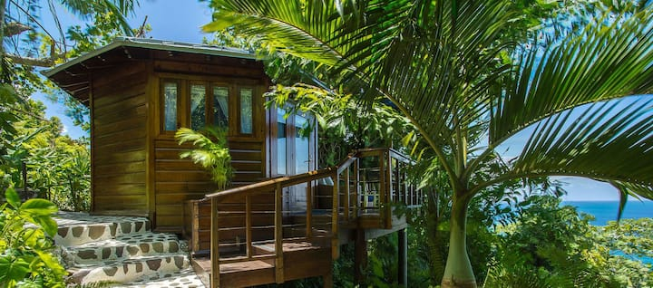 Gorgeous tropical deluxe 1 bedroom cabin