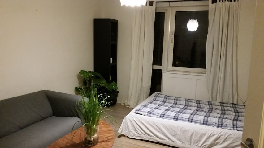 Cosy room with sunny balcony close to city centre - Kodaň - Byt