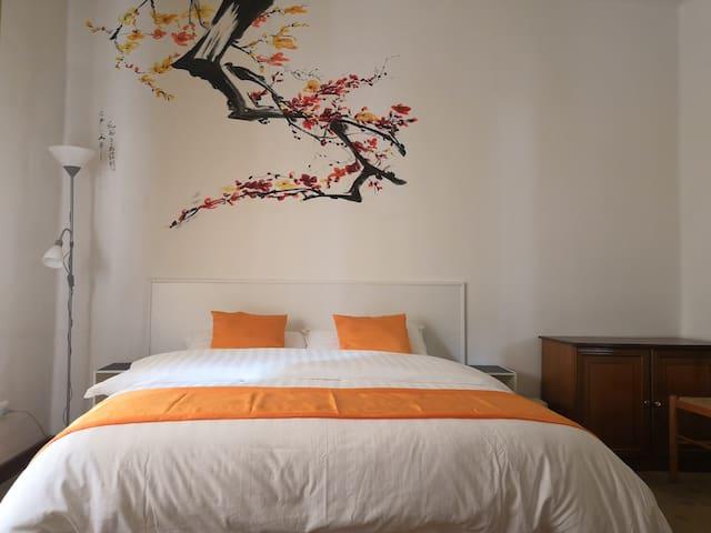 舒适大床间 Comfort couple rooms