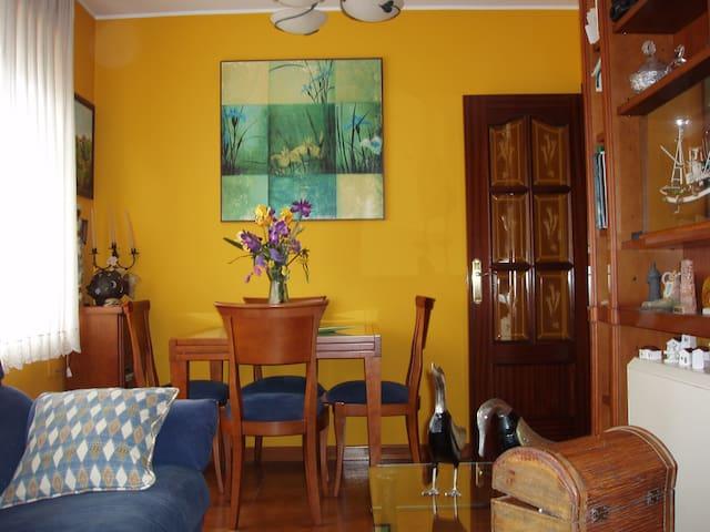 Céntrico apartamento en Villaviciosa