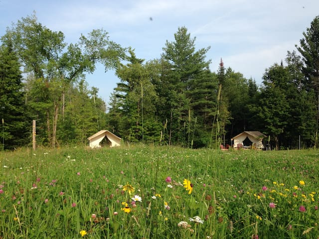 Glamp Thomas on Adirondack Farm - North River - Cabin