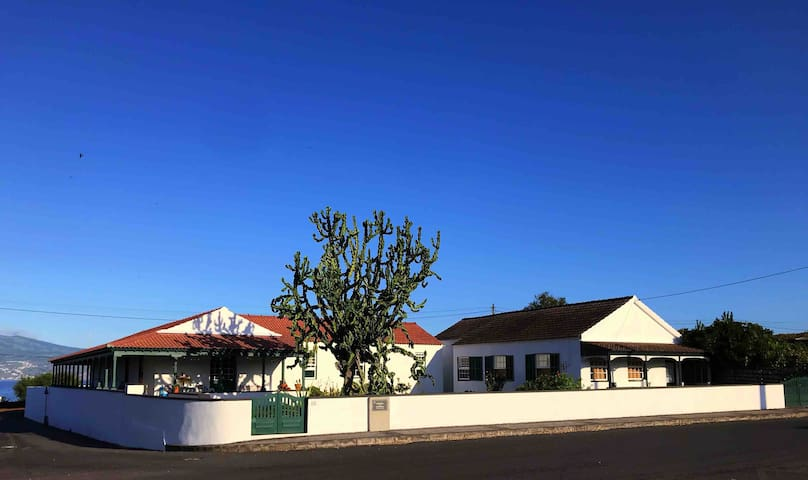Casa do Cacto - Studio Flat