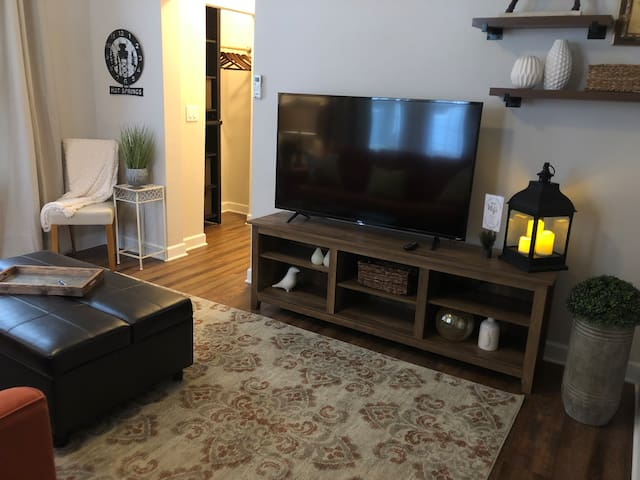 Cute, Clean & Comfy 2!  Easy Walk to Downtown!