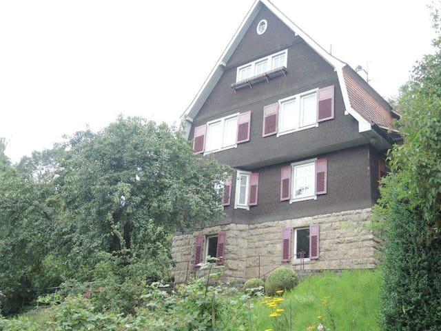Wohnung mit Blick auf hist.Altstadt