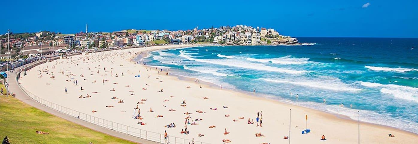 景点林立,配套完善,干净,明亮,开阔,舒适的超值,抢手,方便、实惠的公寓(apartment) - Sydney - Appartement