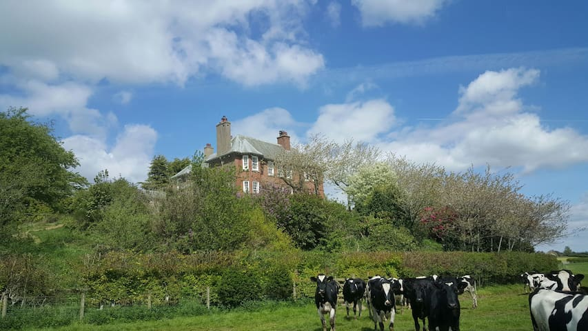 Mansion for up to 24, good times near The Lakes - Carlisle - Hus