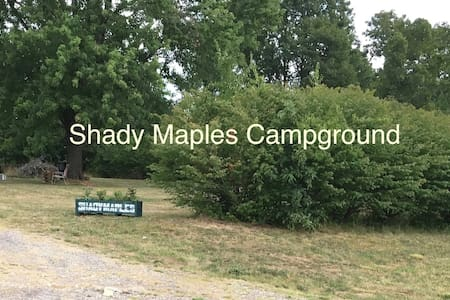 Shady Maples Tent Campsite 1