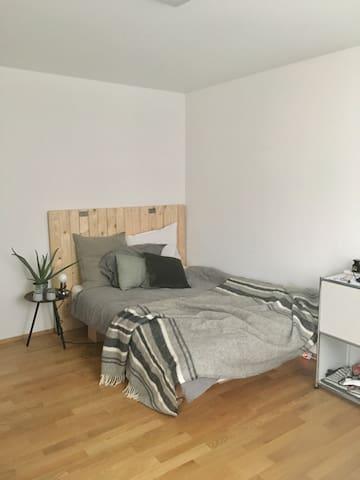 Beautiful Room near HSG