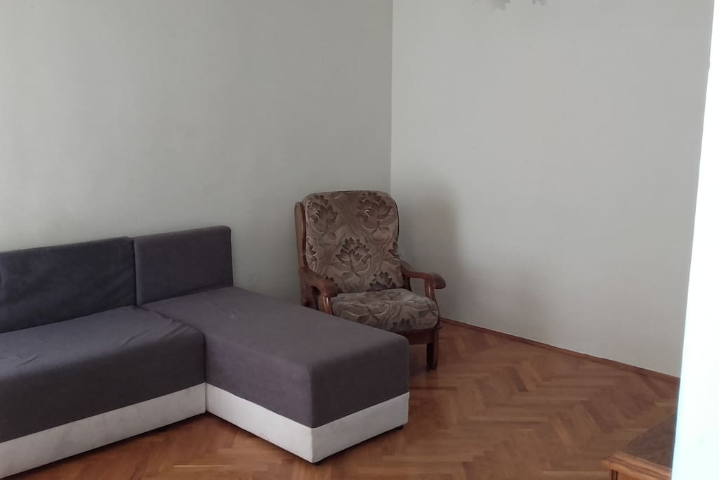 living room with sofa bed for two people