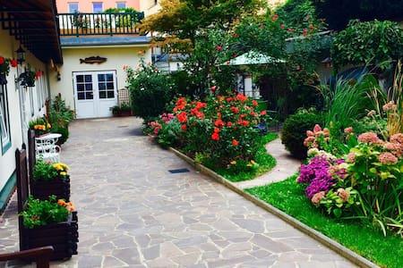 Ebenerdiges Apartment mit wunderschönem Innenhof - Krems an der Donau