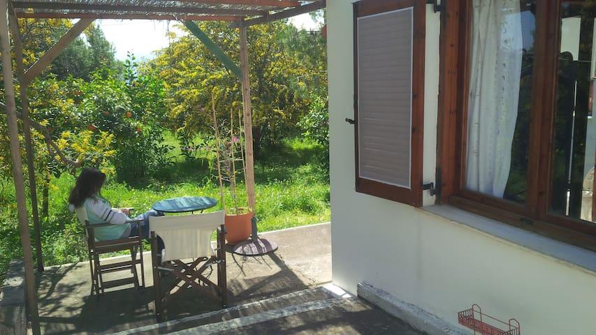 Lovely beach house with big garden - Paralia Tolofonos - Bungalow