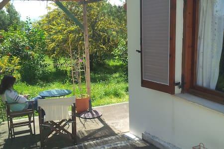 Lovely beach house with big garden - Paralia Tolofonos - Бунгало