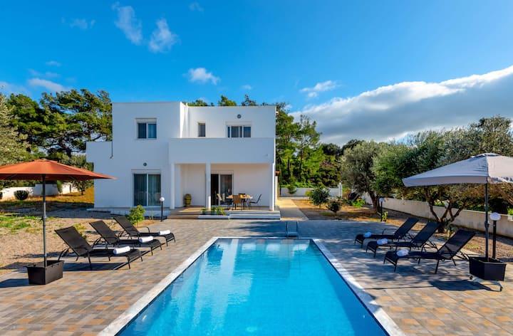 Vasilis Pool Villa