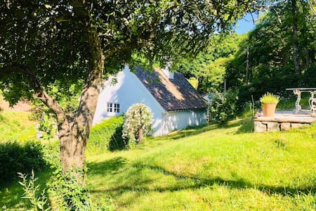 Pretty country cottage on the edge of Dartmoor