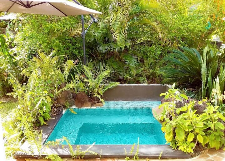 Spacious House, Plunge Pool, Mangrove Acces