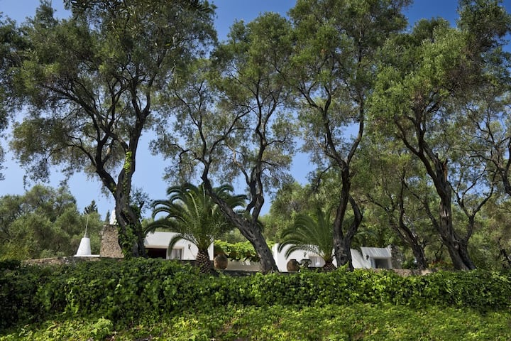 Olive Grove 🌳 Luxury Villa⚡️3' walk from the beach🏖