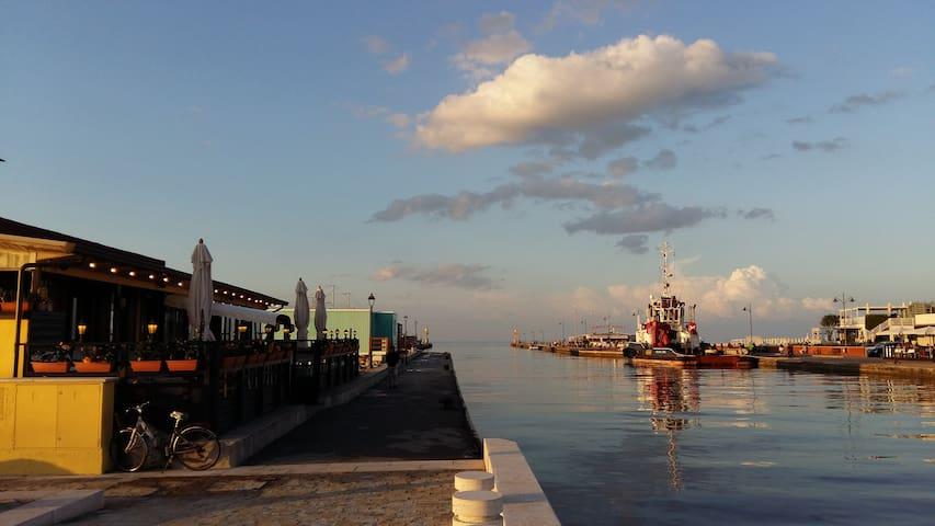 Villetta 7 posti sul Mare di Zadina - Cesenatico - Casa