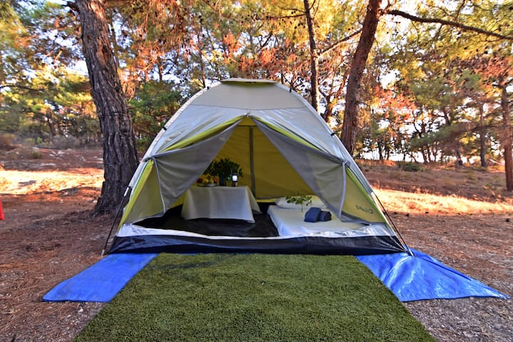 Camping tent for 1 person  at Drolma Ling