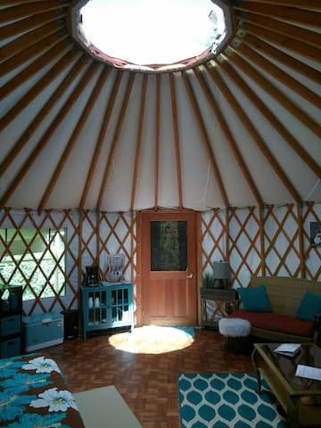 Beautiful yurt in tropical paradise