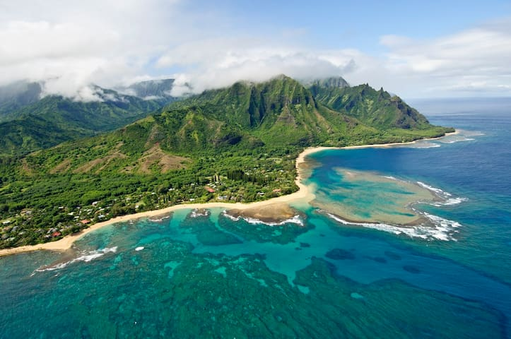 Hale Pulelehua TVNC #1238 Fall Special! 20% off the nightly rate