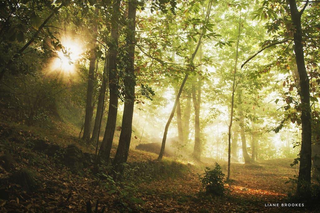 Wild camping Paladini, autumn