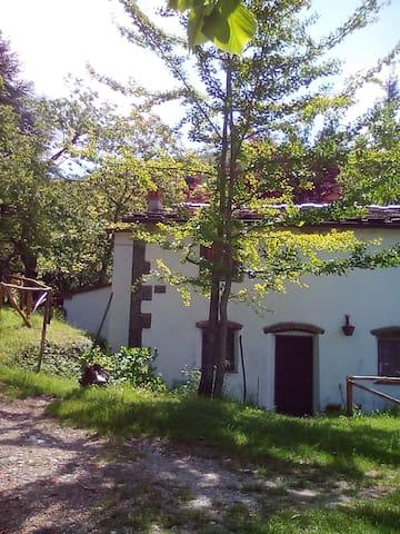 Casa nel bosco a 10 minuti da Pistoia - Passo della Collina-collina Vec