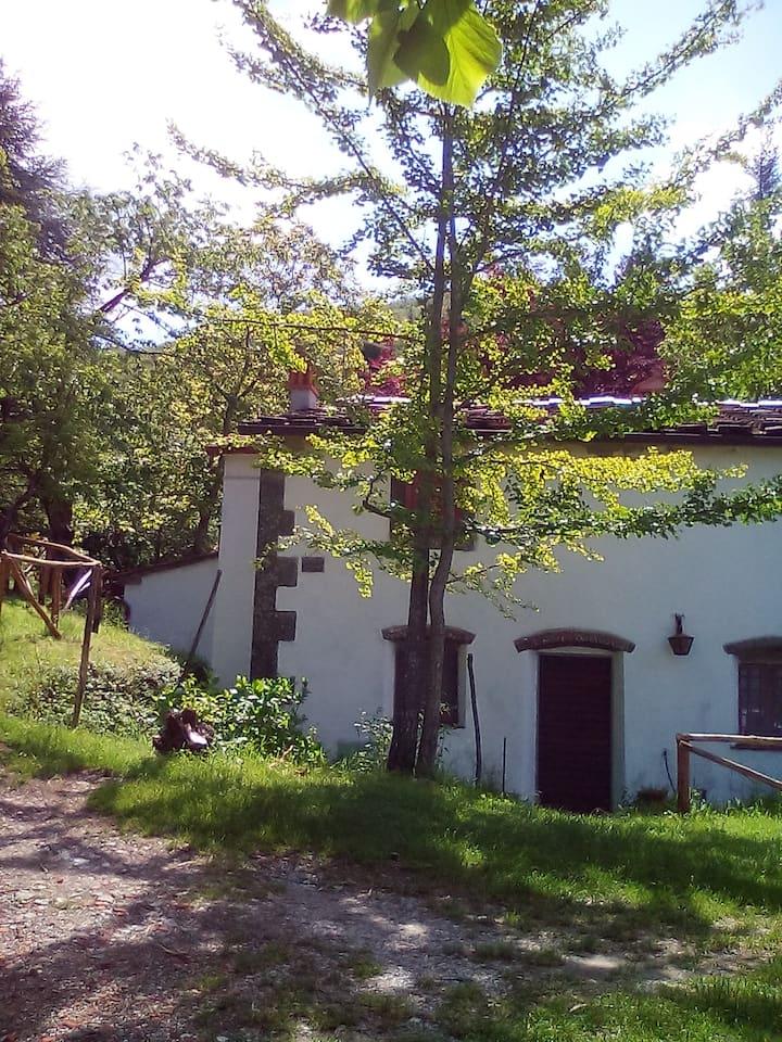 Casa nel bosco a 10 minuti da Pistoia