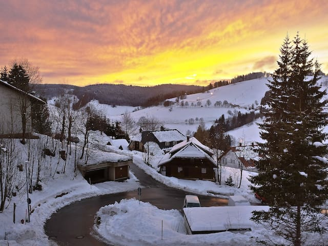 40 m² apartment Schauinsland for 4 persons in Todtnau