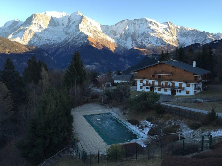 Bel appartement familiale face au Mont Blanc