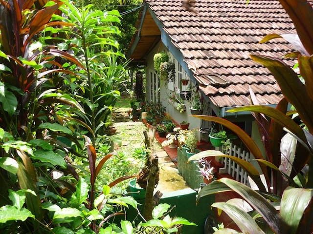 Lovely home near kandy! Surrounded by nature