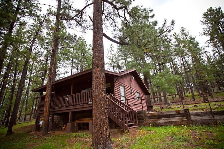 Julie's Rustic Mountain Cabin