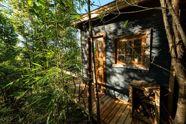 A cozy cabaña in the forest