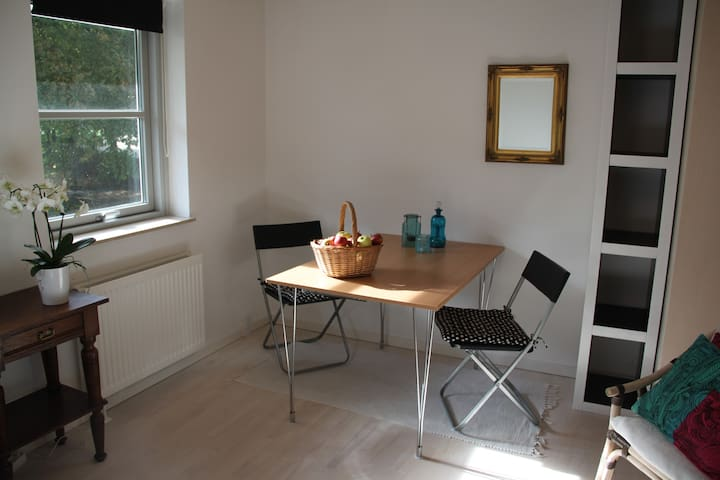 Nice room in central location - Greve Strand - House