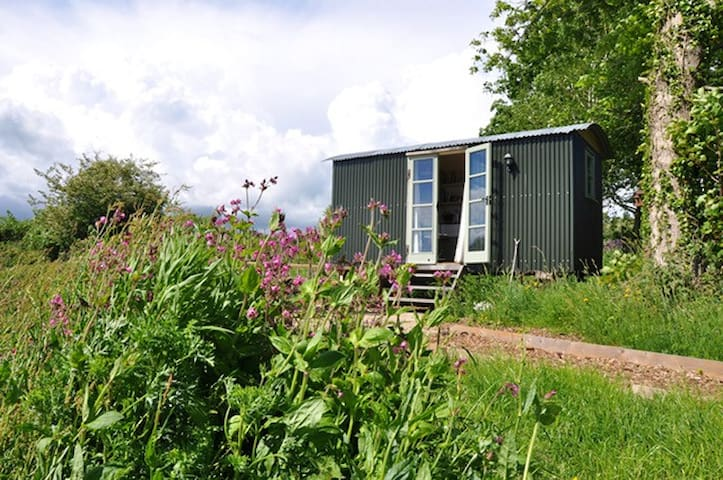 Shepherds Hut With Ensuite,Stunning View, Bridport