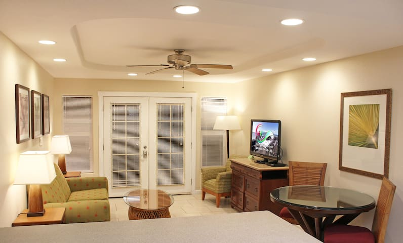 "Living Room has Air Conditioner, 46"" Flat Screen TV, Sleeper Sofa, Dining Table with Chairs, Ceiling Fan"
