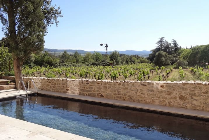 Charming house in the vineyards with swimmingpool - Fabrezan - Huis