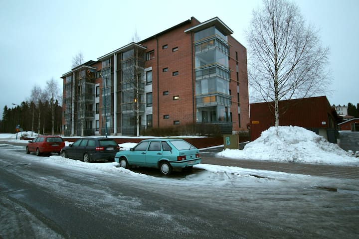 One bedroom apartment in Oulu, Siipikuja 1 (ID 11165)
