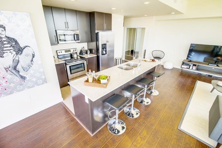Sparkling, hip 3 bedroom in Downtown SD
