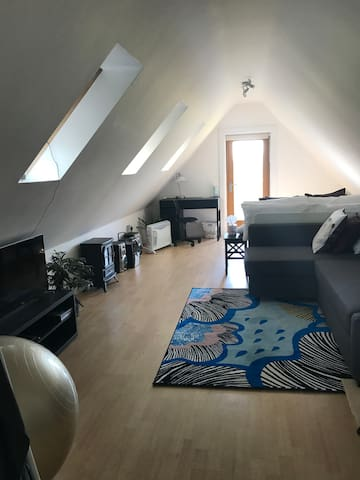 Loft Apartment. South Hampshire. - Hampshire - Huoneisto