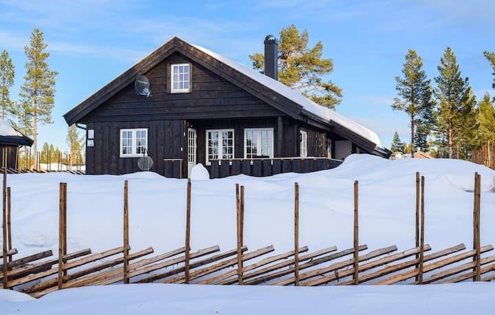 Hyggelig hytte. Sanderstølen på Golsfjellet, Norge
