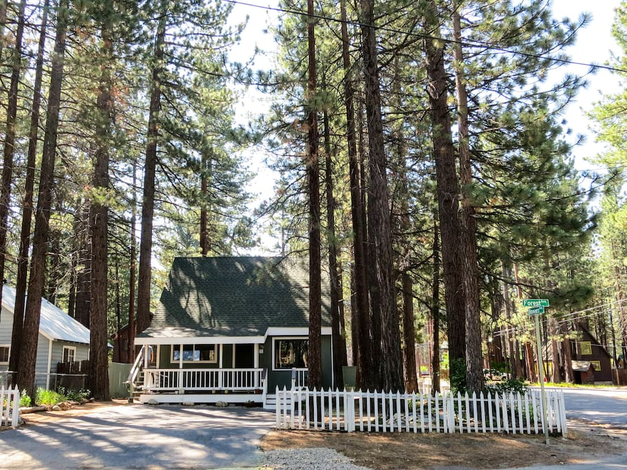The urban forest of South Lake Tahoe