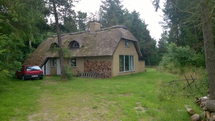 Sommerhus tæt ved Vesterhav, skov og natur - Ulfborg